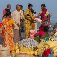 Inde, vente de poissons séchés en bord de route (Gopalpur état d'Odisha)