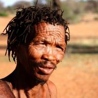 Bushman Kalahari